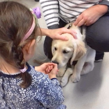 """Primrose is learning how to hold her hands so as not to get them """"nipped"""" by an enthusiastic puppy."""
