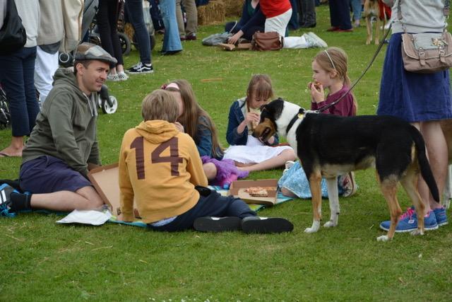 dog picnic.jpeg