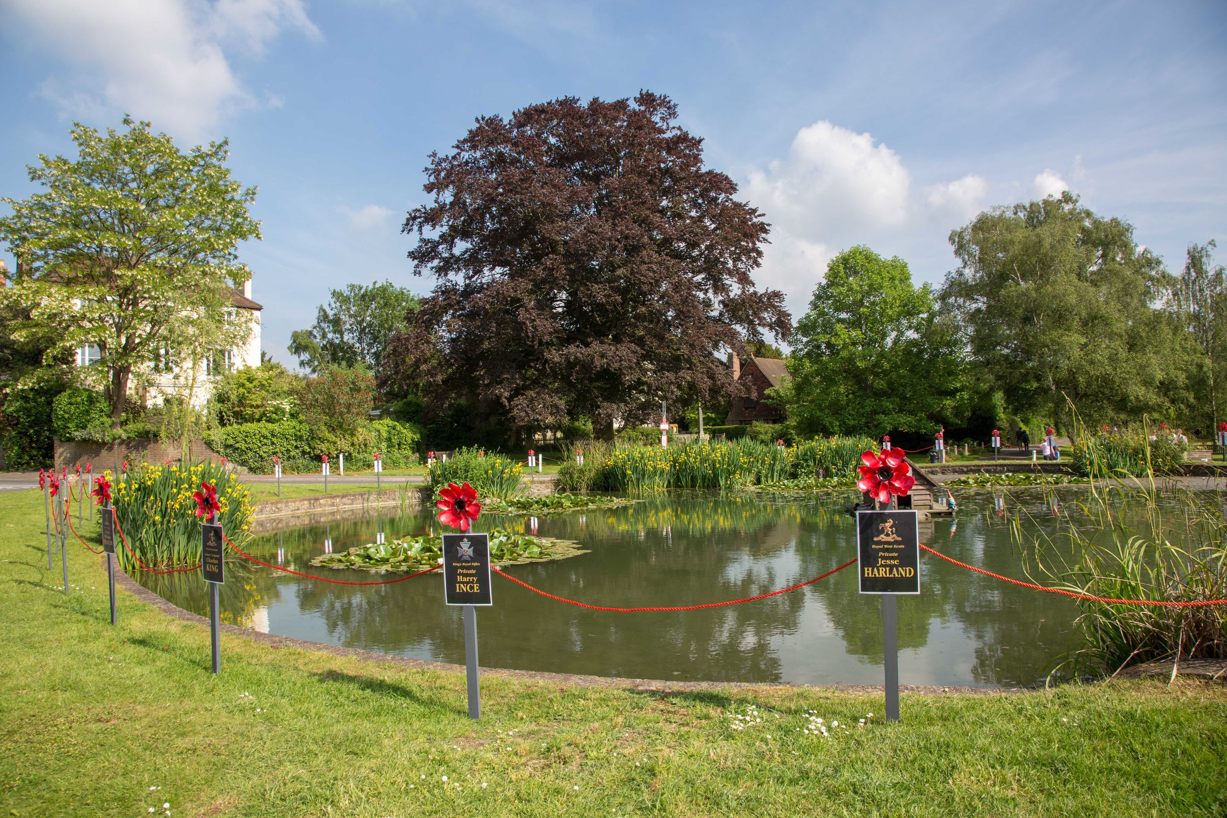 Otford Pond with Memorial poppies.JPG