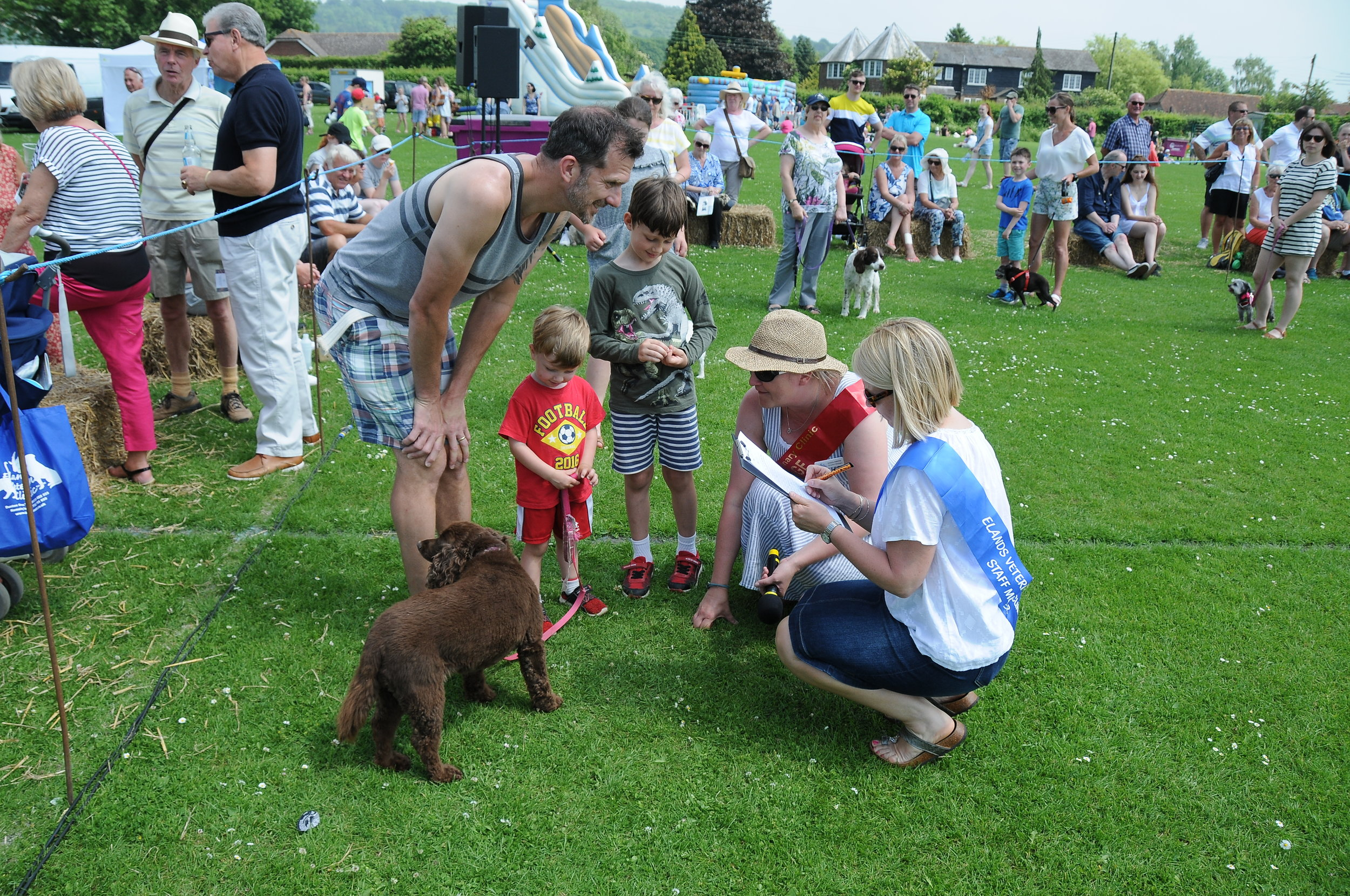 Judging a dog at the fete.jpg