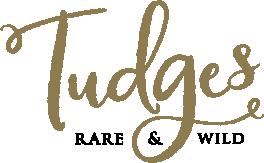Tudges-Primary-ID-Colour.png
