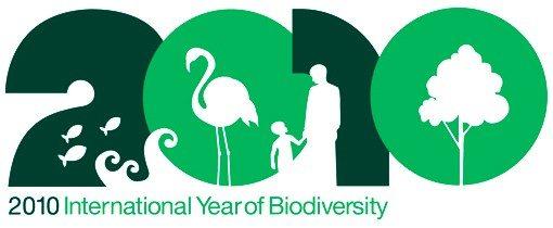 2010-year-of-biodiversity.jpg