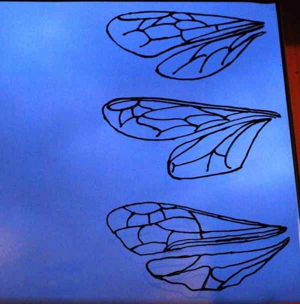 window-wings-craft1-bug-chicks.jpg