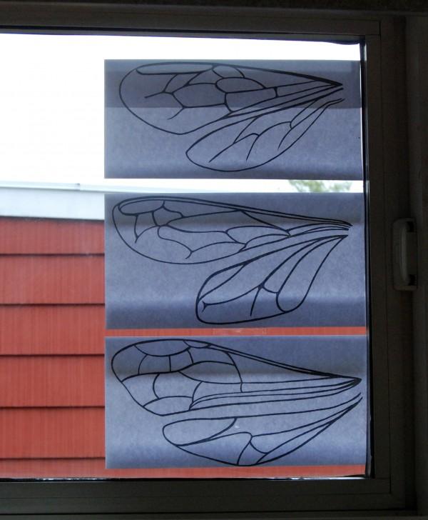 window-wings-craft7-bug-chicks.jpg
