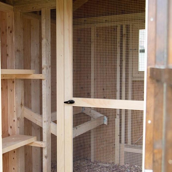 Chicks & Peeps Interior