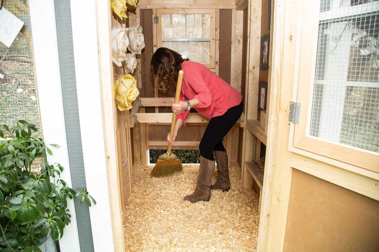 Clean Out The Coop Door™