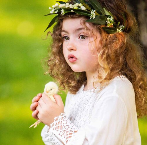 little-girl-spring-chick-baby-chicken.jpg