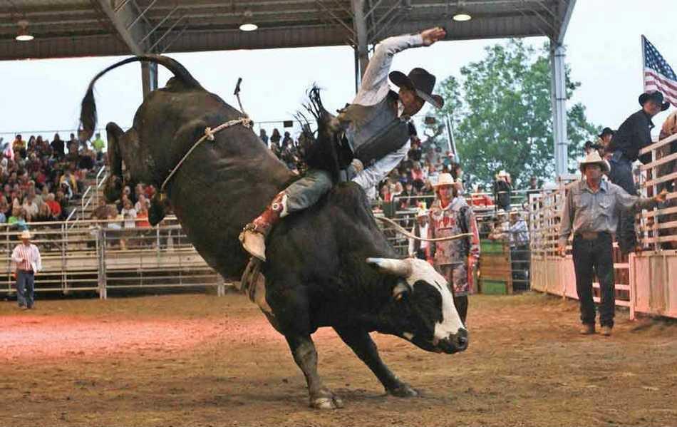 Rodeo_WEB_vl1ltDY.max-1200x675.max-1200x675.max-1200x675.jpg