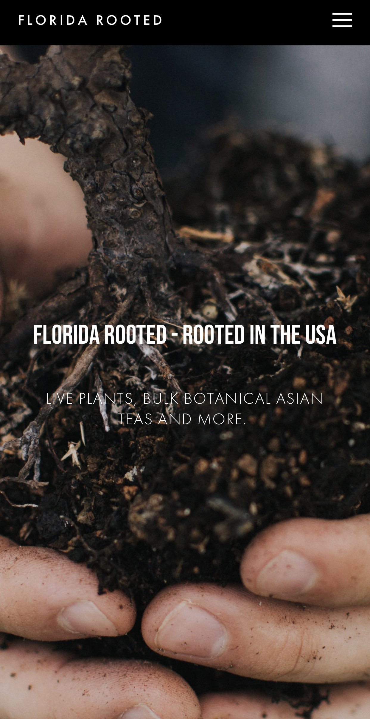 Client: Florida Rooted - Website redesign // Logo redesign // Blog copy