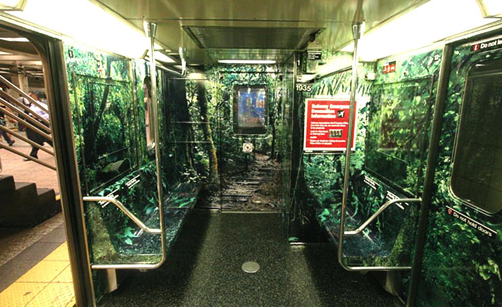 woods subway_o.jpg