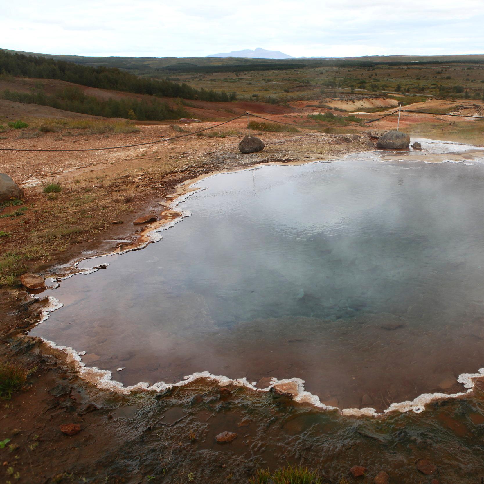 Vegan reisen durch Island