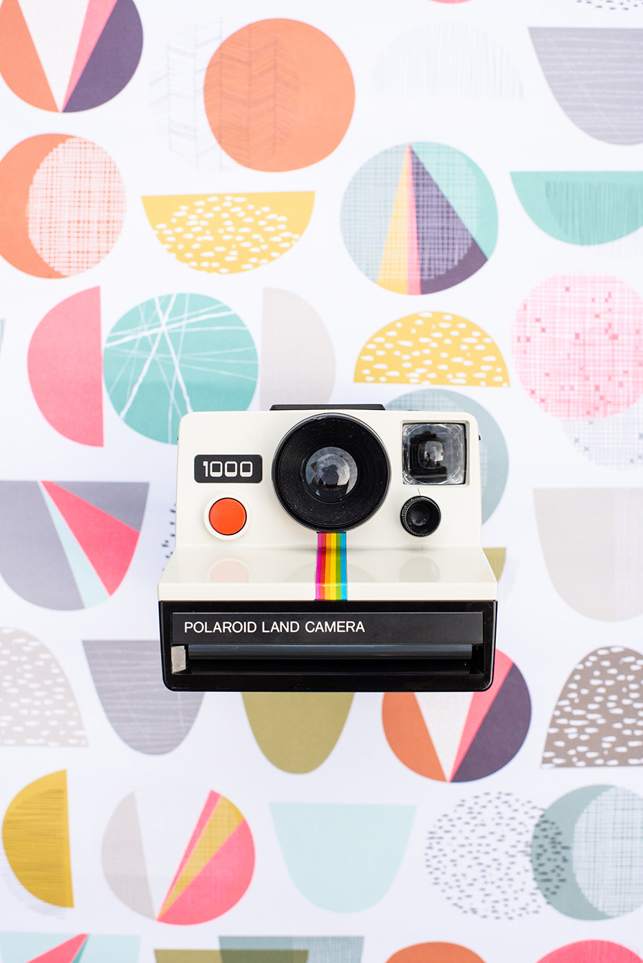 polaroid- land-camera-100009.jpg
