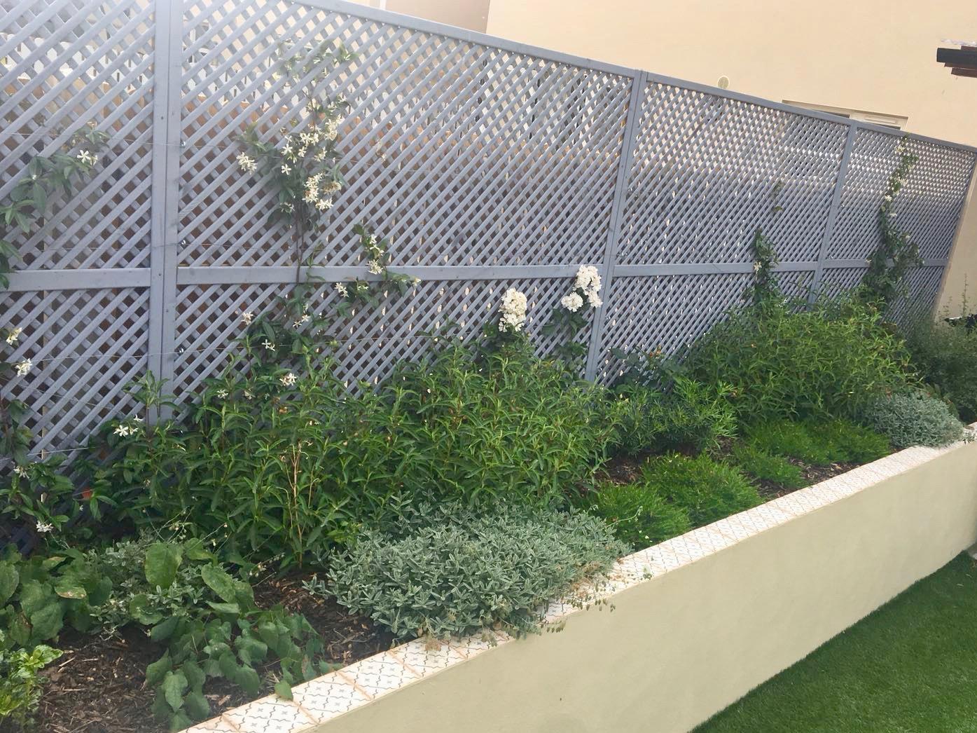 alex-alexandra-hollingsworth-garden-design-fairhaven-2.jpg