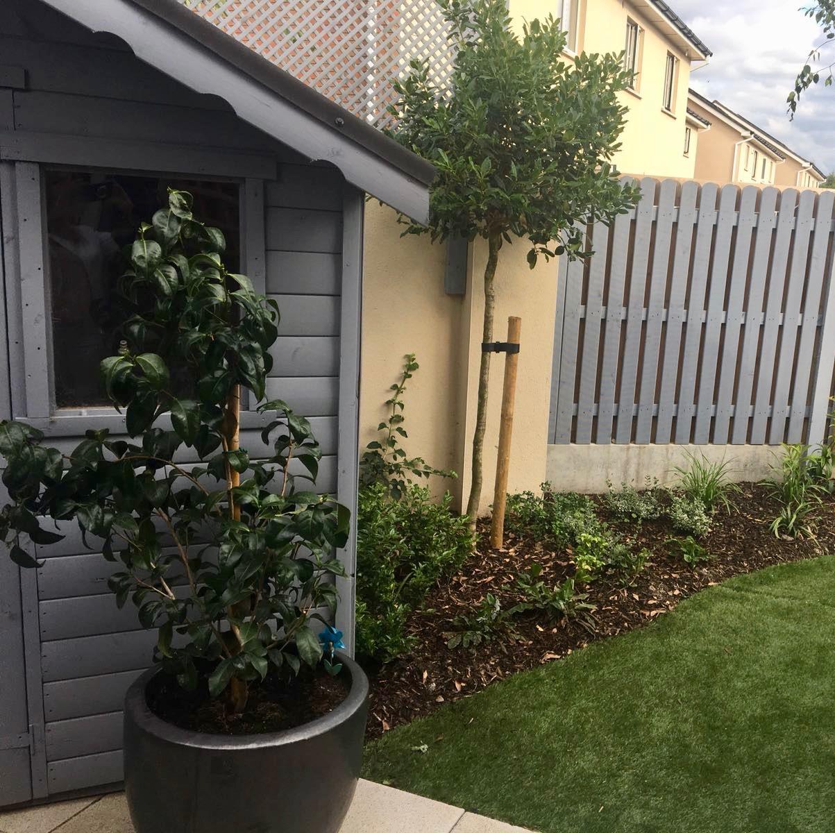 alex-alexandra-hollingsworth-garden-design-fairhaven-3.jpg