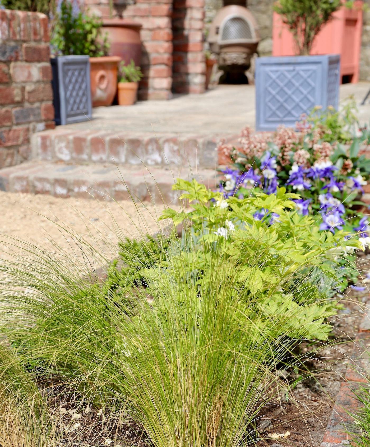 super-alex-alexandra-hollingsworth-garden-design-3.jpg