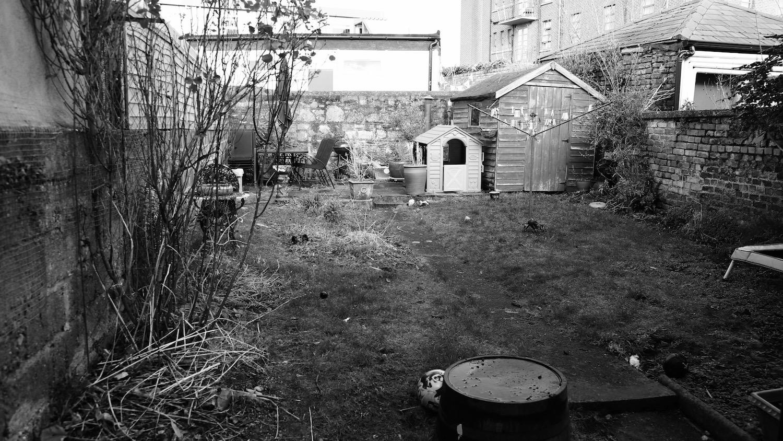 super-alex-alexandra-hollingsworth-garden-design-2.jpg