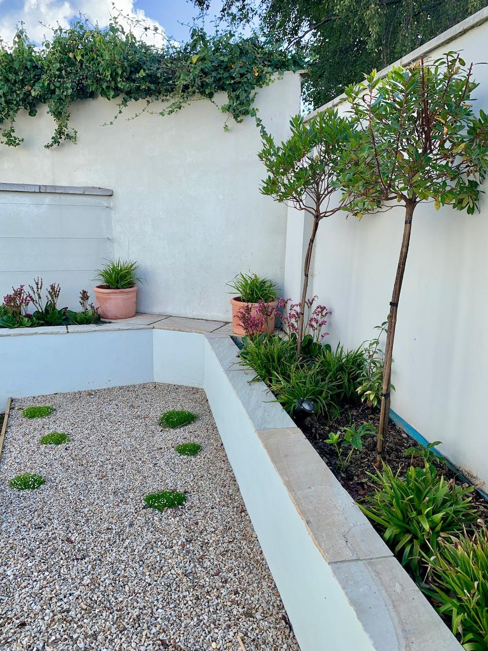 alex-alexandra-hollingsworth-garden-design-london-glenageary4.jpg