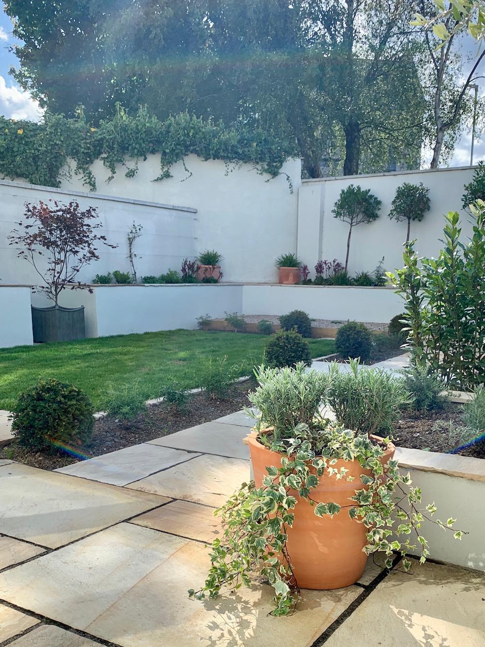 alex-alexandra-hollingsworth-garden-design-london-glenageary.jpg