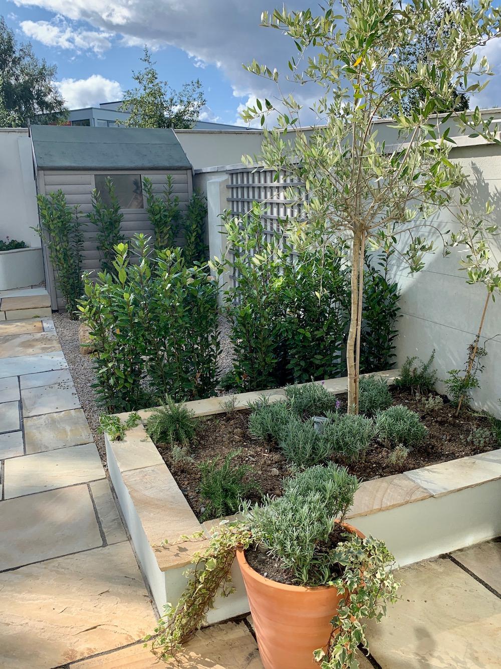 alex-alexandra-hollingsworth-garden-design-london-glenageary3.jpg