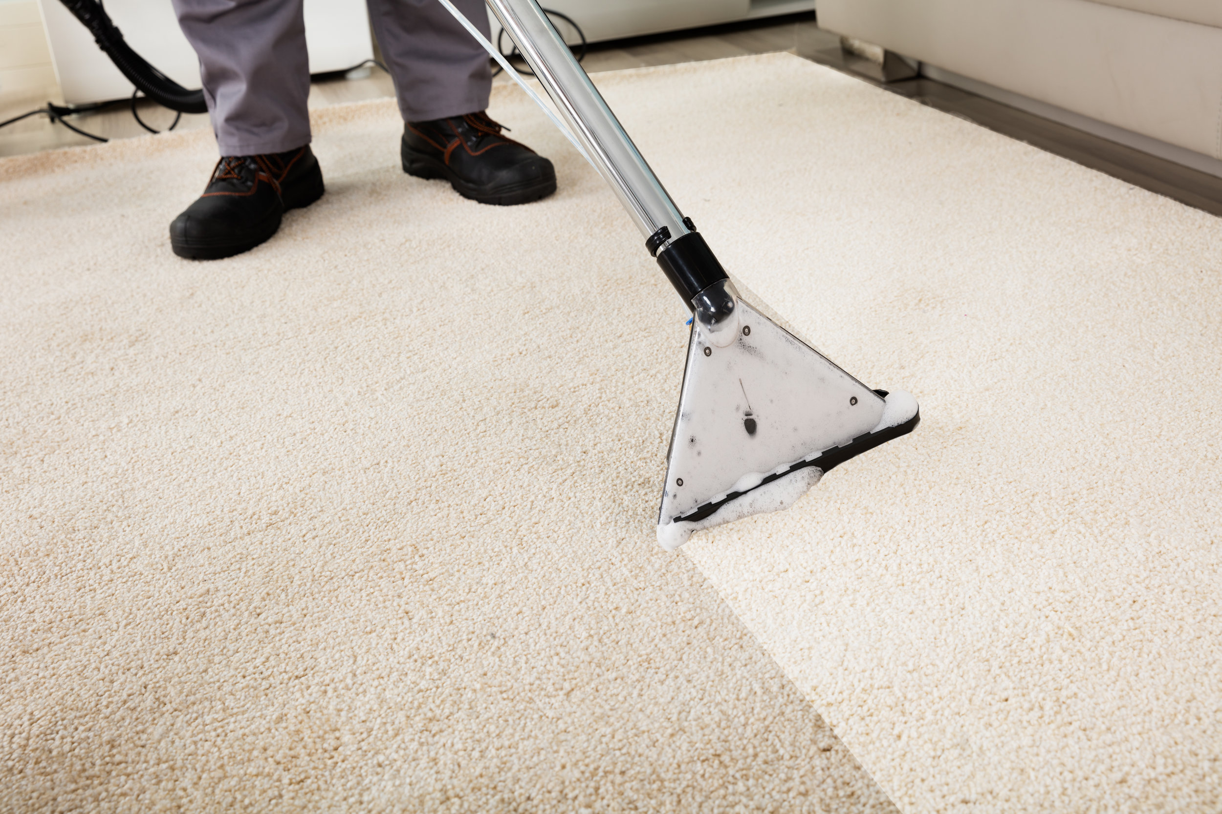 Carpet Cleaning -