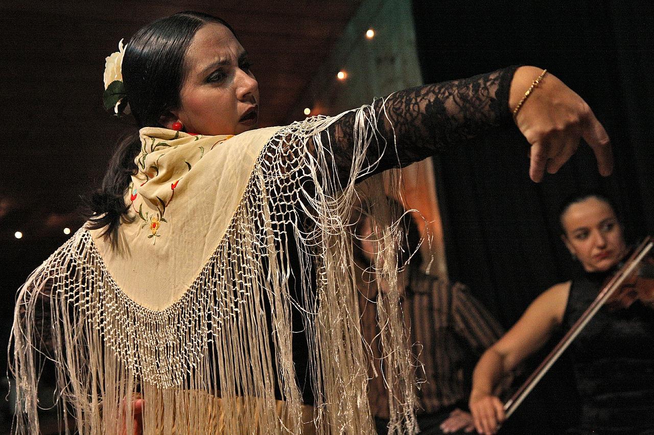 flamenco-594272_1280.jpg