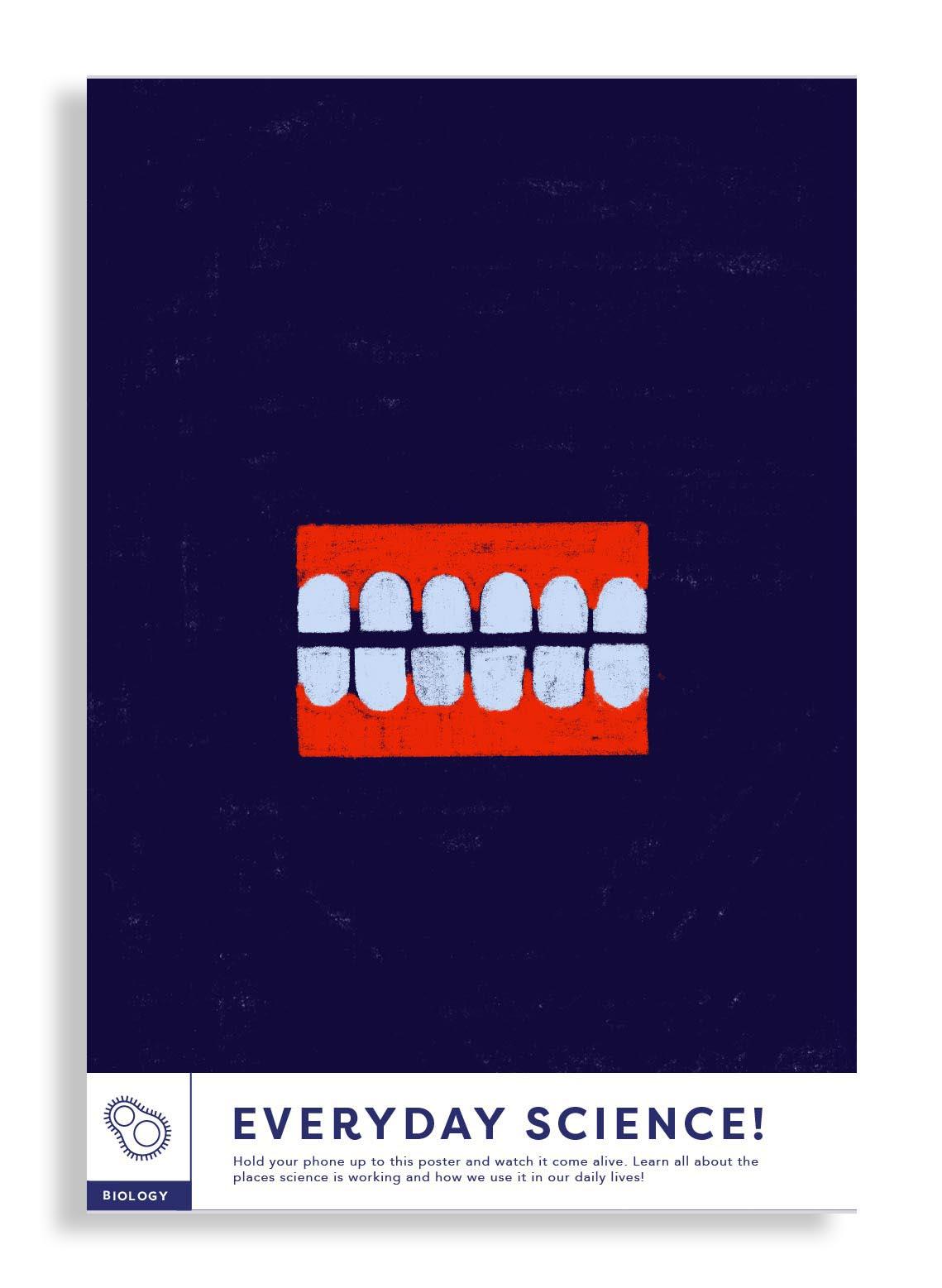 dentures white.jpg