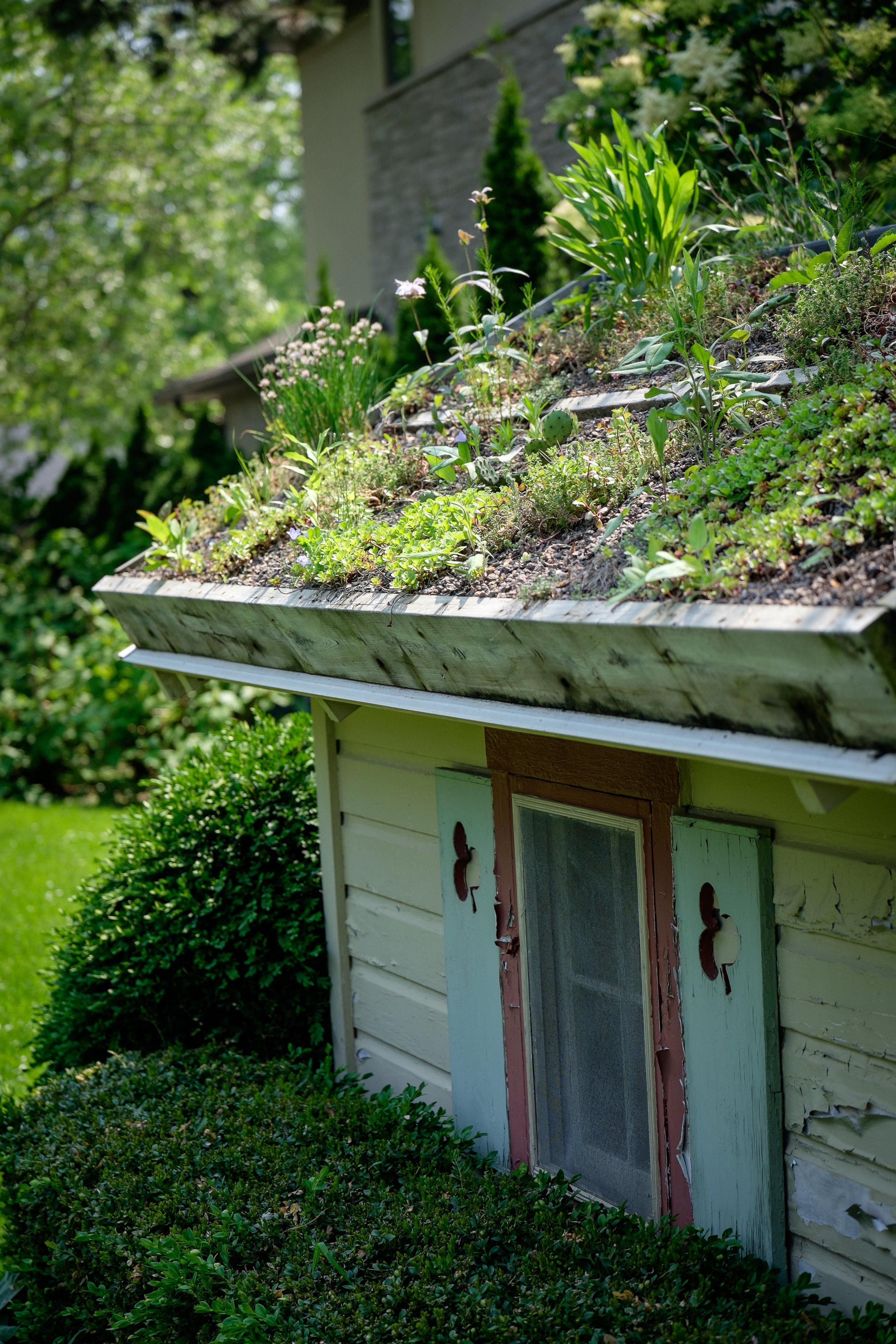 garden-23.jpg
