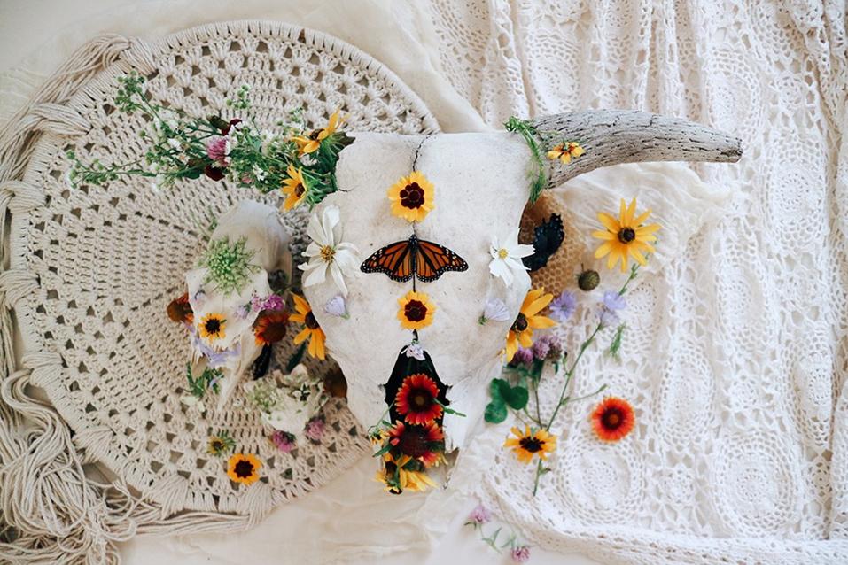 8-ways-to-save-the-pollinators.jpg