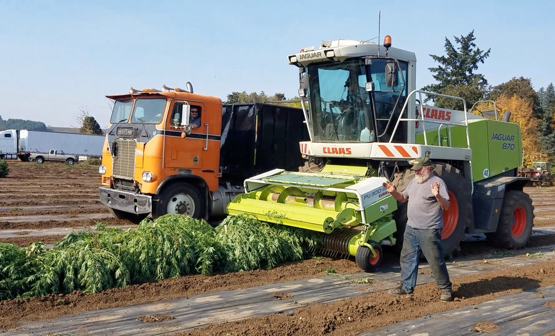 Harvest - Hemp Machine Harvester 1