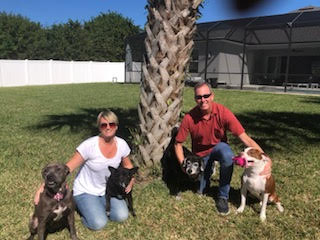 Wendy and Pete with temporary foster Juno, resident dogs Lily and Tucker, and permanent foster Captain,