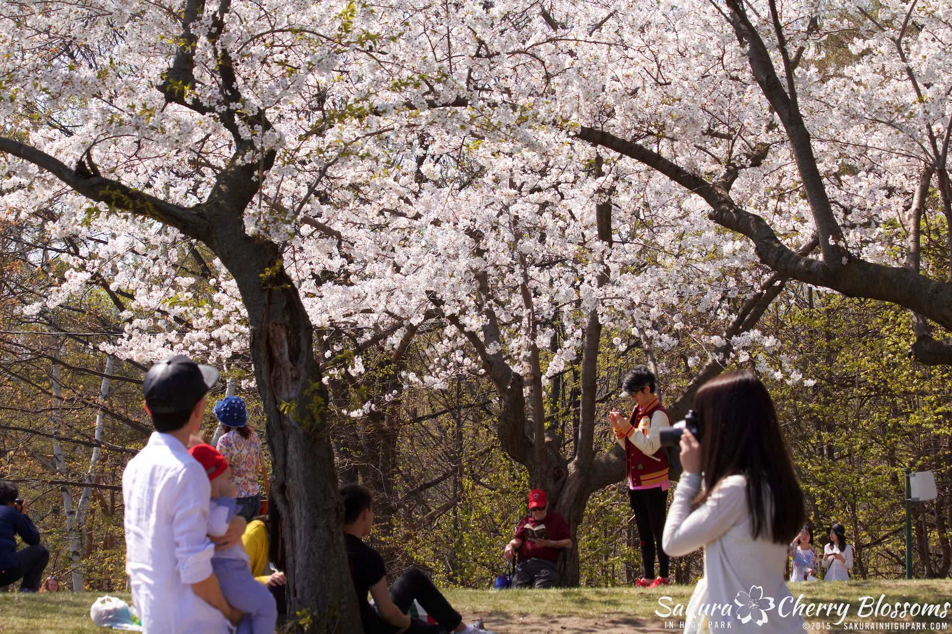 SakurainHighPark-May715-2310.jpg