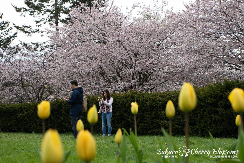 sakura watch may 14-2019-285.jpg