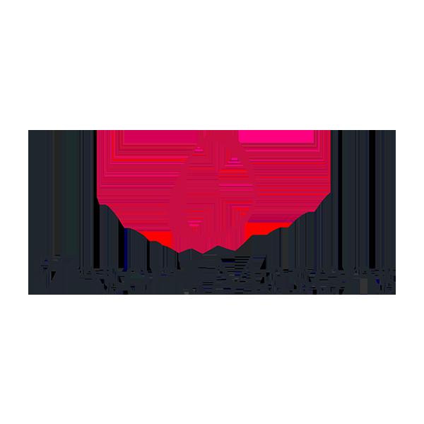 pinset-logo.png
