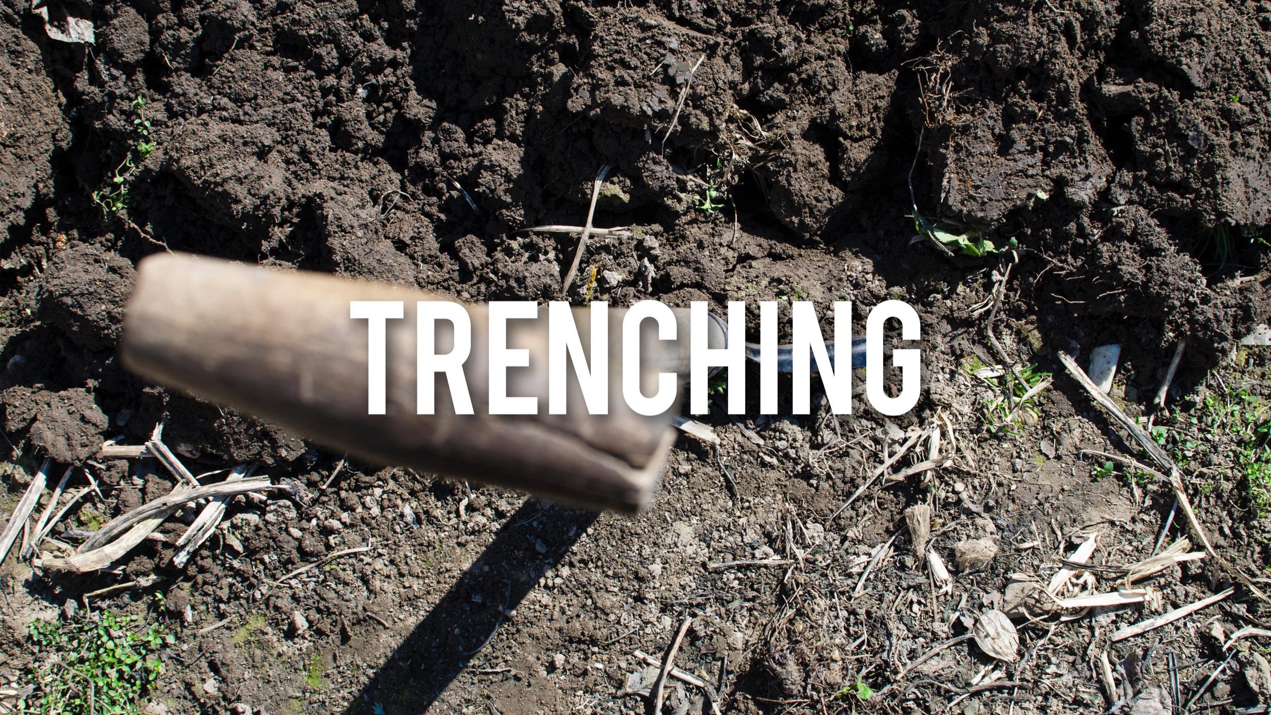 S.E Trenching.jpg