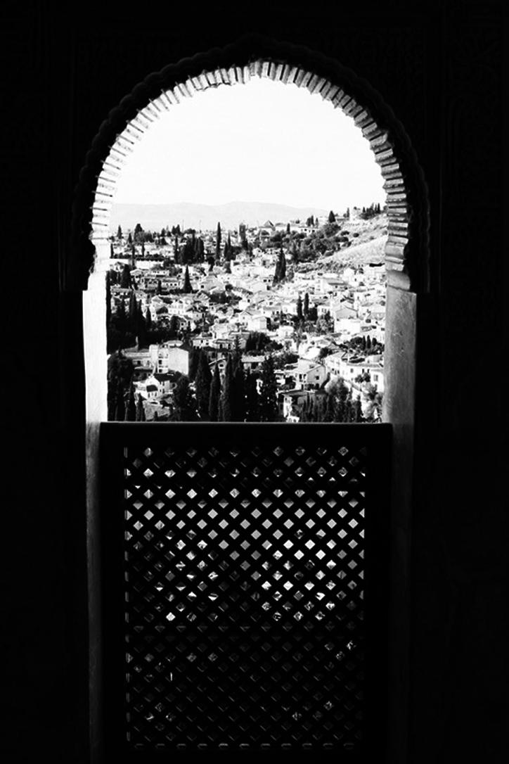 shadow window.jpg