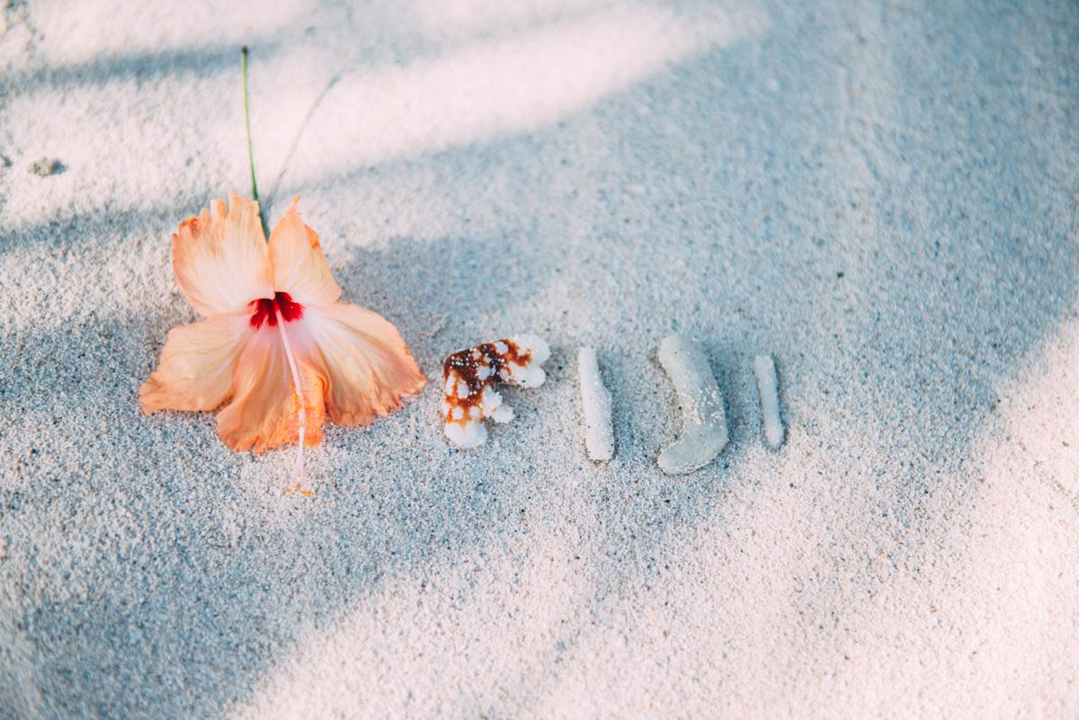 Fiji-blog-Lola-Photography-6112.jpg