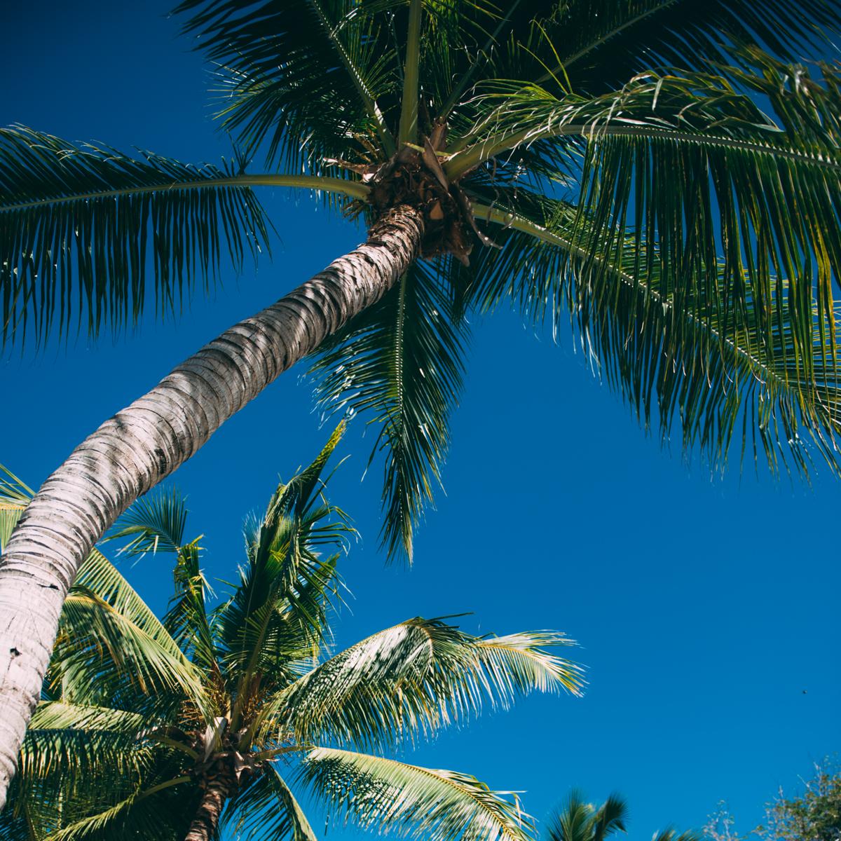 Fiji-blog-Lola-Photography-6834.jpg