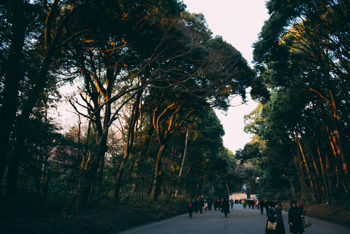 Japanblog-Lola-Photography-8509.jpg