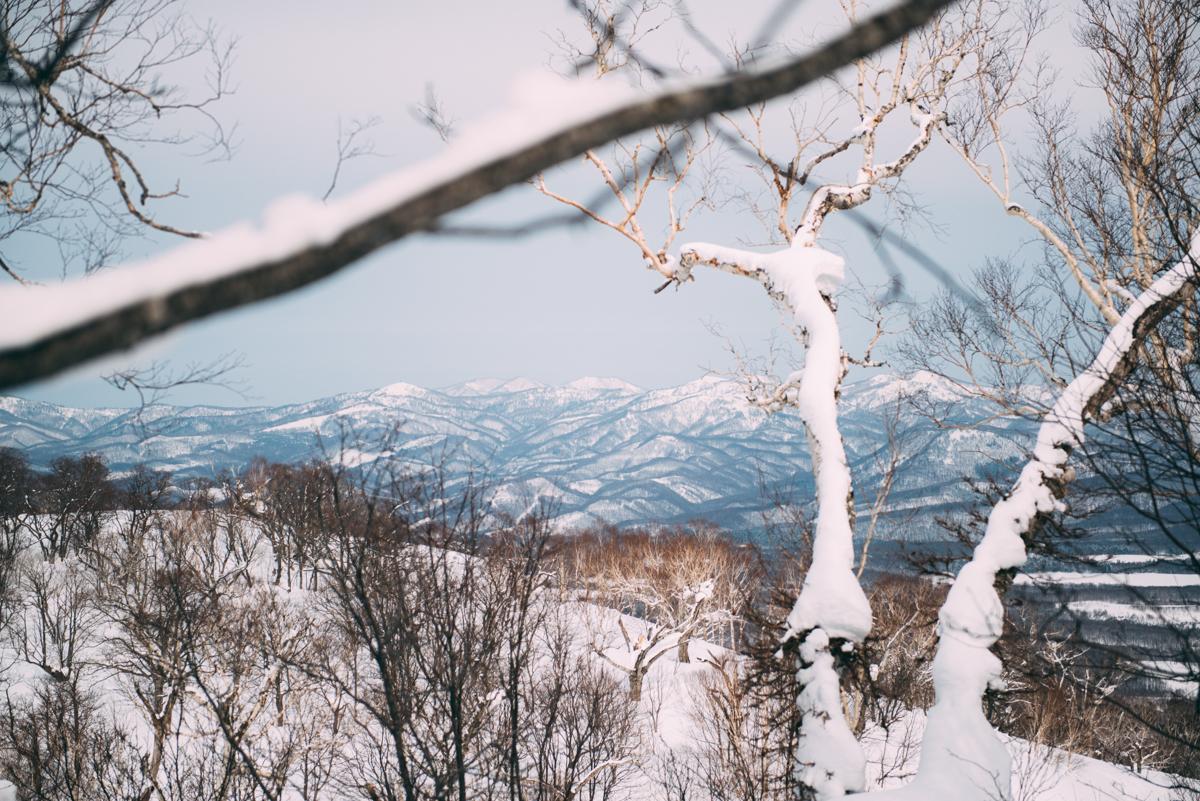 Japanblog-Lola-Photography-8841.jpg