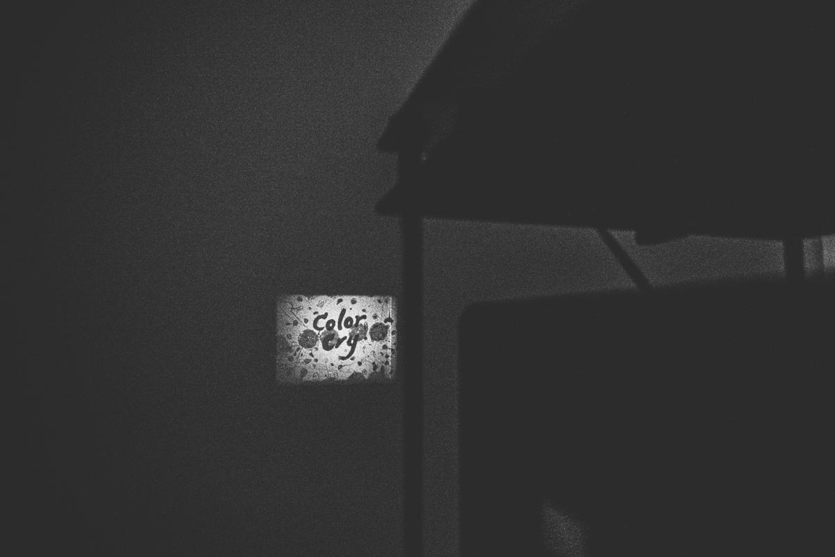 Lola-Photography-Venture-Taranaki-Blog_107.jpg