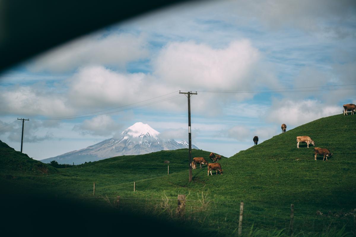 Lola-Photography-Venture-Taranaki-Blog_140.jpg