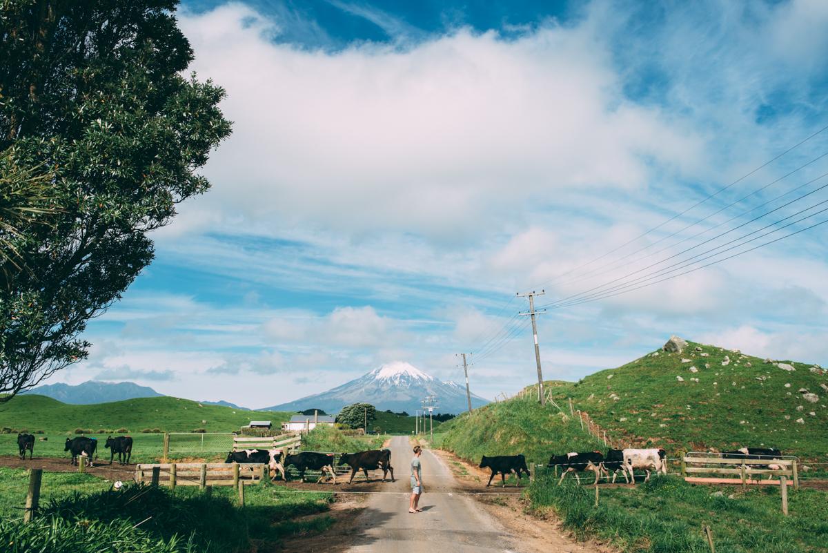 Lola-Photography-Venture-Taranaki-Blog_141.jpg