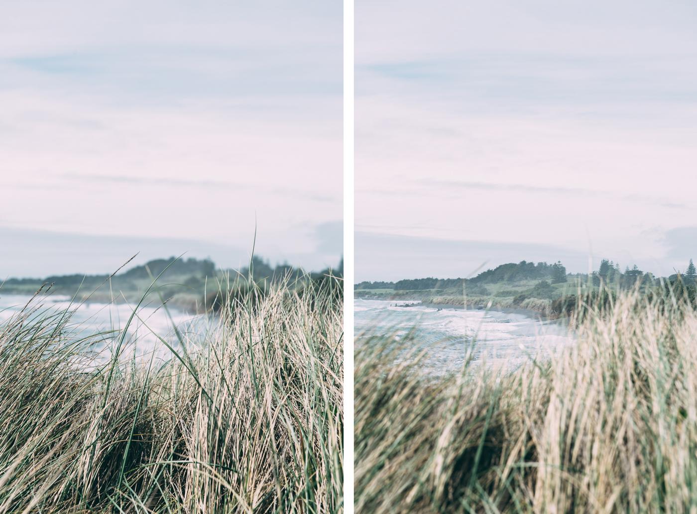 Venture-Taranaki-Lola-Photography15.jpg