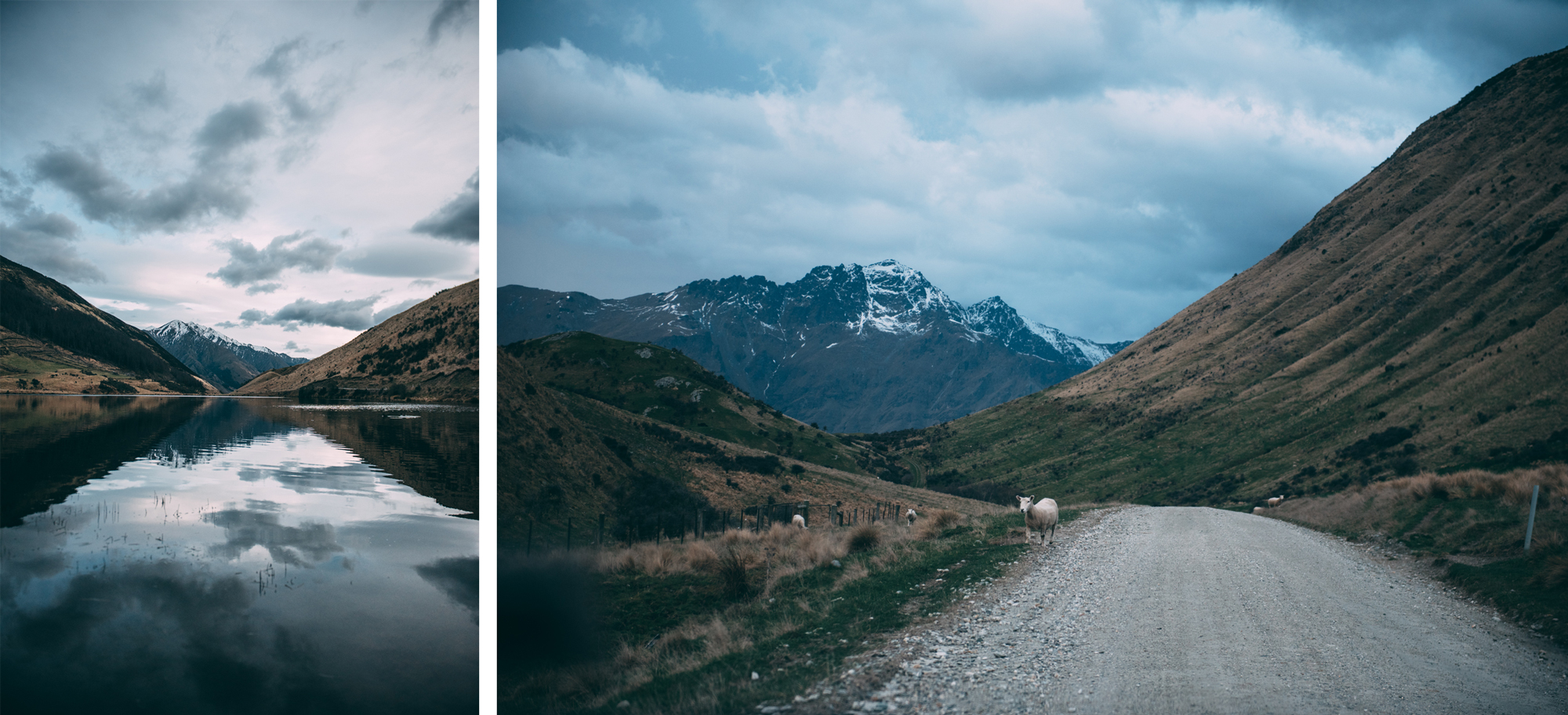 10-Queenstown-Blog-Lola-Photography.jpg