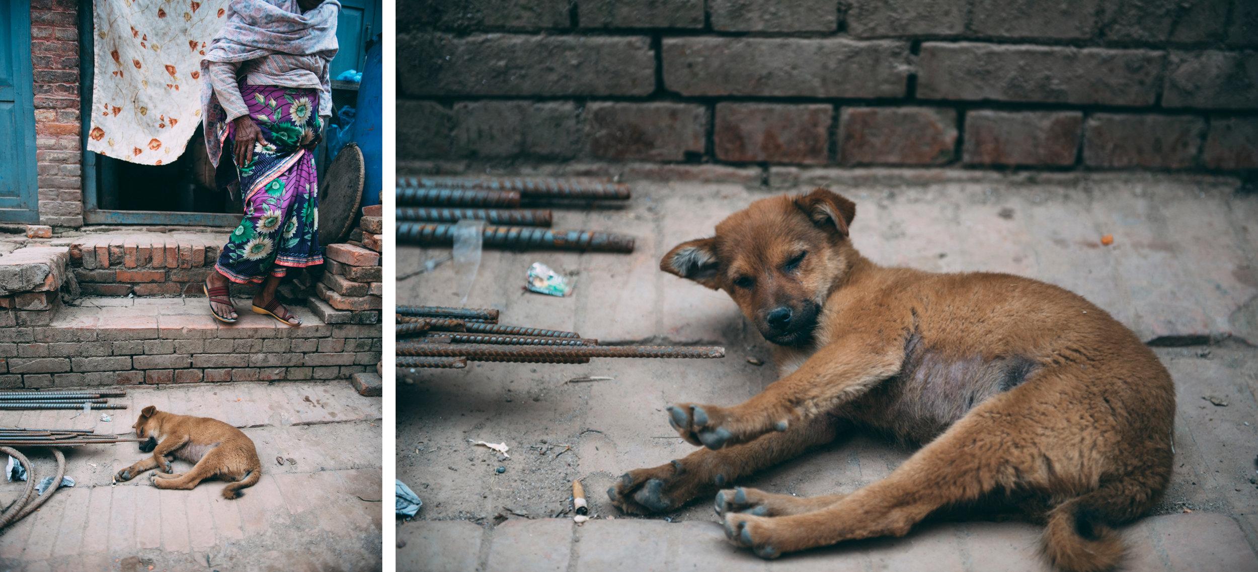 26-Nepal-Blog-Lola-Photography_001.jpg