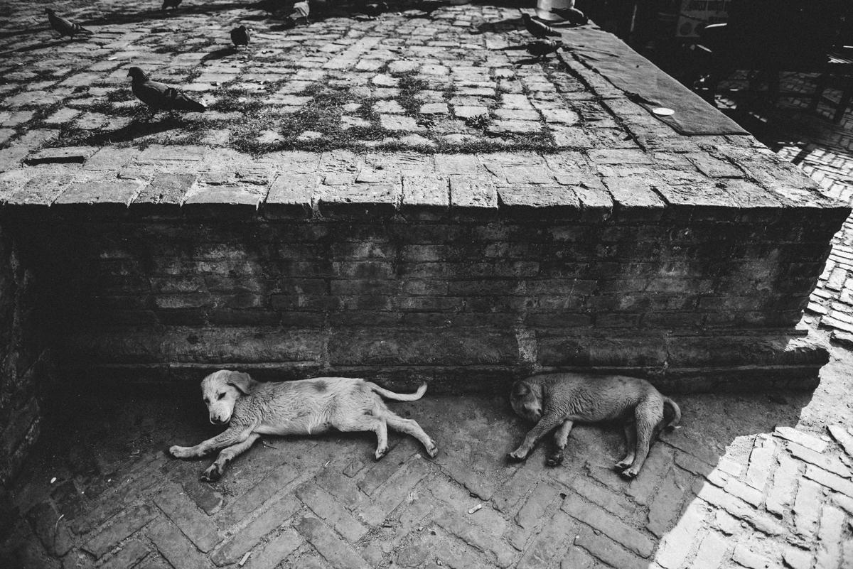Nepal Blog Lola Photography_274.jpg