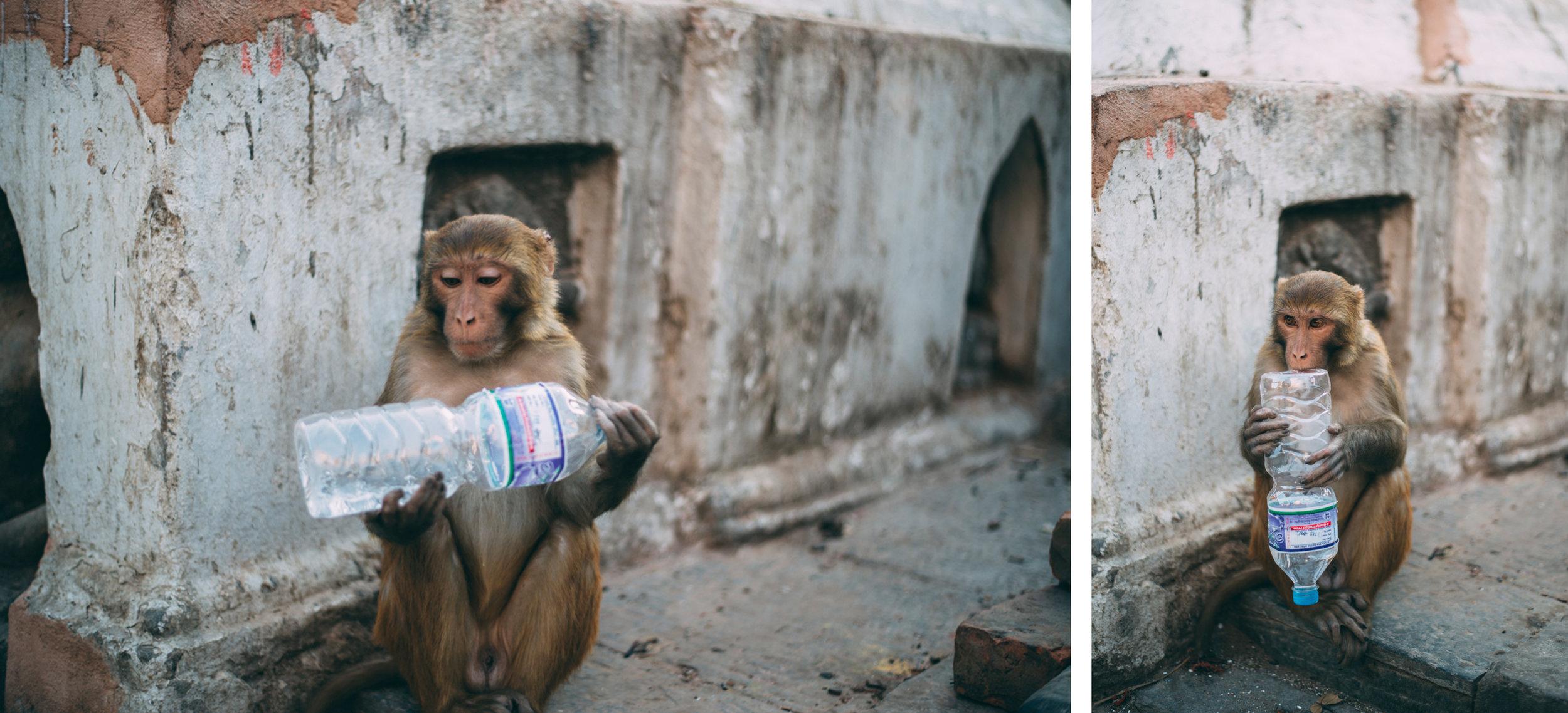 58-Nepal-Blog-Lola-Photography_001.jpg