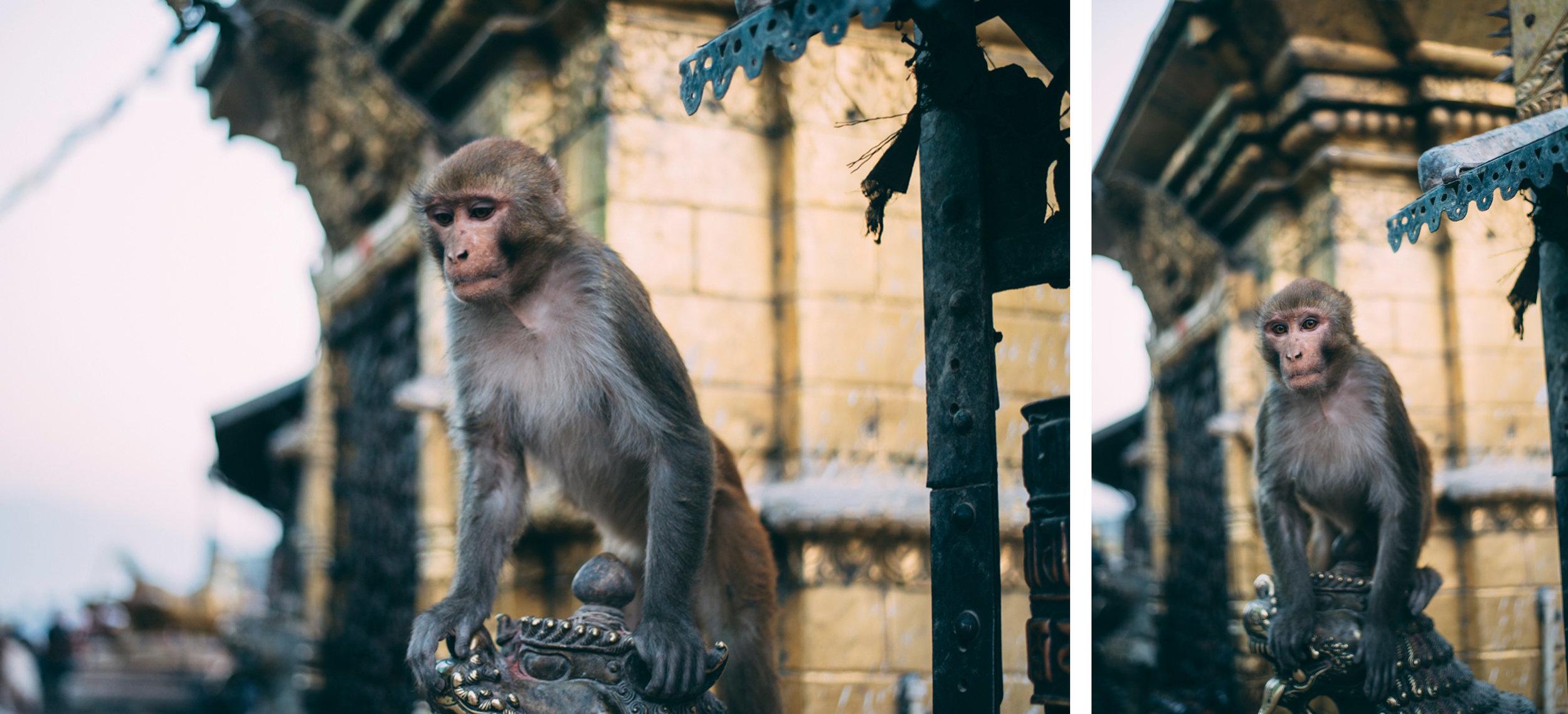 59-Nepal-Blog-Lola-Photography_001.jpg