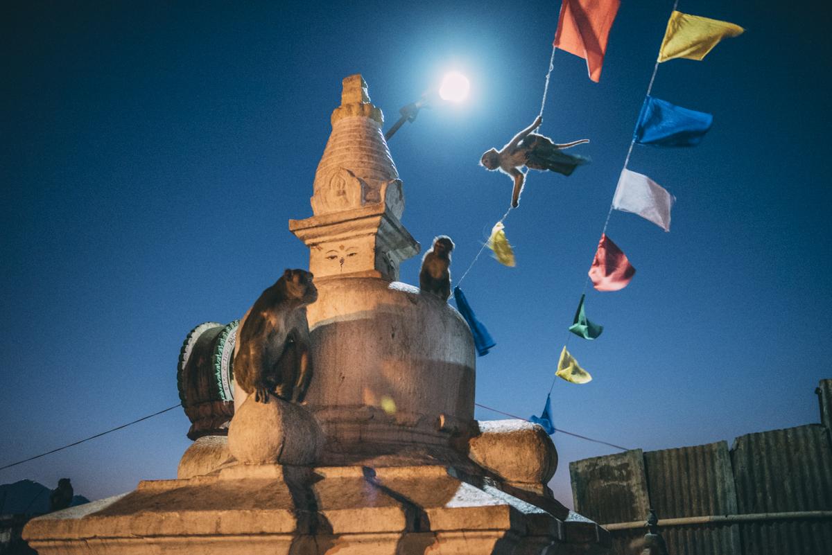 Nepal Blog Lola Photography_515.jpg