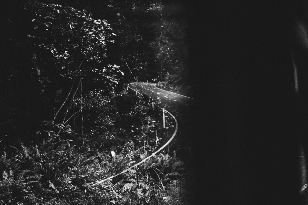 Milford Sound Blog Lola Photography_029.jpg